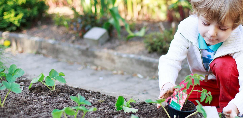 About Leura Child Care Centre & Preschool